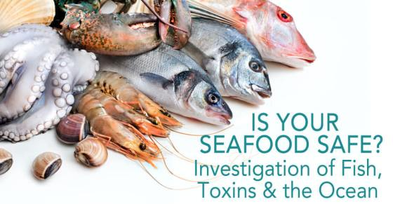 is-seafood-safe