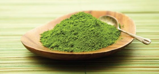 green-tea-extract-01-1200x560