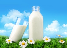 Bottle and glass of milk with grass, daisies and sky