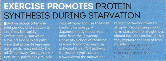 Exercise promotes protein synthesis during starvation