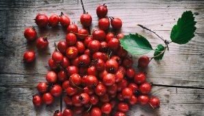 Hawthorne-Berries[2]